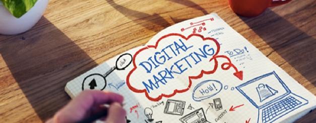 Digital Marketing Career?